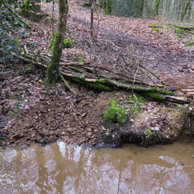 2018-03-10 Fabrication passerelle forêt Rennes-21