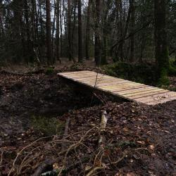 2018-03-10 Fabrication passerelle forêt Rennes 26-12